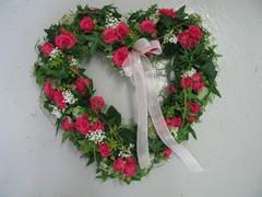 Kukkaseppele   120 e