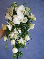 Orkidea, eustoma, freesia, 100 e