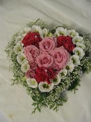 Ruusuja, neilikoita, eustomaa, harsokukkaa