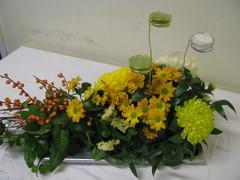 Krysanteemeja, ilexinoksaa, kynttiläpesiä