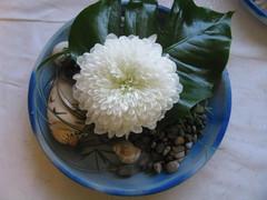 Matala kukka-asetelma, koristeena mm. simpukoita ja rantakiviä