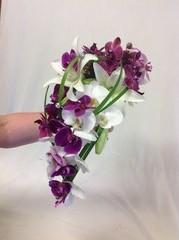 Perhosorkidea, eri värisiä, lilja, lilygrassheinää