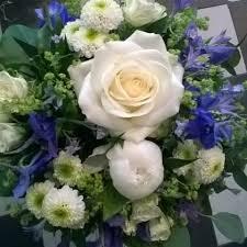 sinivalkoisia_kukkia