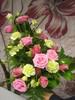 Surukimppu vaalenpuna-lime