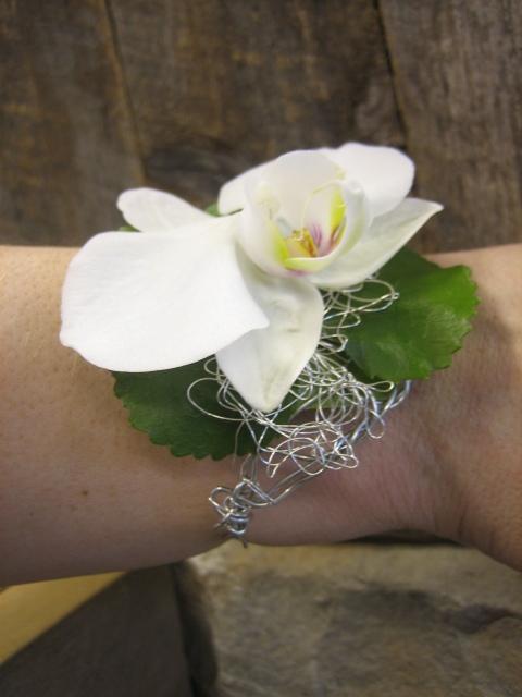 rannekukka orkidea
