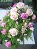 Surulaite vaalenpunaiset ruusut
