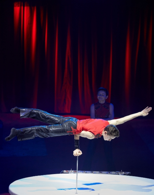sirkusfinlandia201901.jpeg
