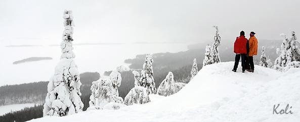 K128 Ukko-Koli talvella kaamoksen aikaan