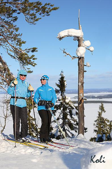 K135 Naiset hiihtoretkellä Mäkrävaaralla