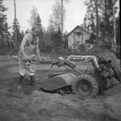 Puutarhatyötä 1950-luvulla Laajalahdessa