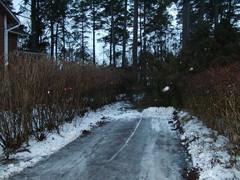 Kaatuneen puun raivausta ajoradalta