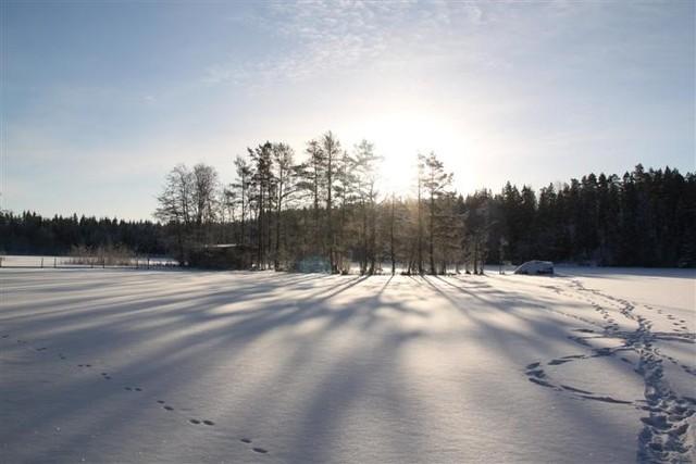Niinijarvi_talviaurinko_