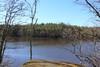 niinijärvi näkymä järvelle