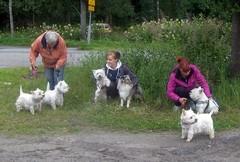 23.7.-12: Luna, Bigi, Sofi, Mila, Nella ja Niilo