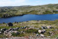 Tunturijärvi