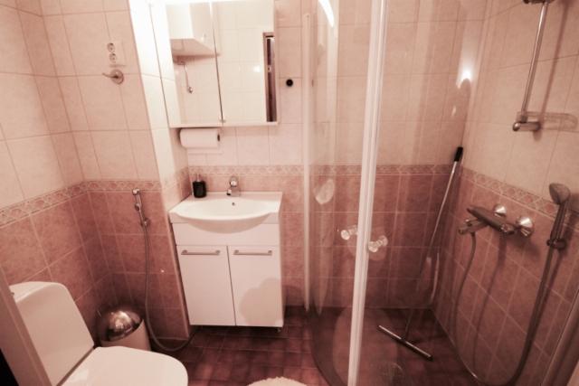 Yläkerran WC + Suihku