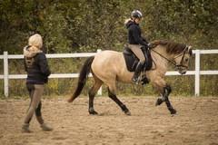 Laura ja Milja treeneissä