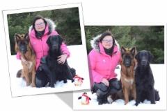 Anne ja koirat