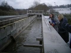 Jätevedenpuhdistamo