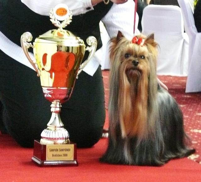 Champion of the Champion gaala