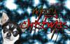 Merry Christmas -Yorex kennel