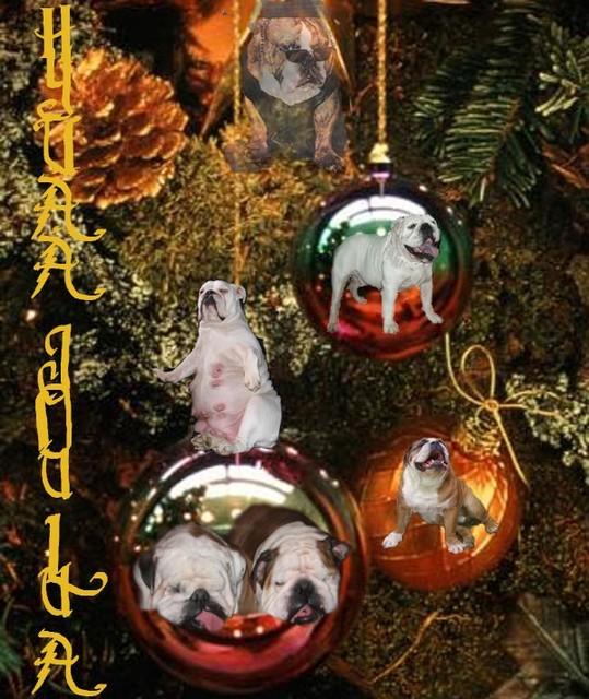 Hyvää Joulua ! Kari ja Annele