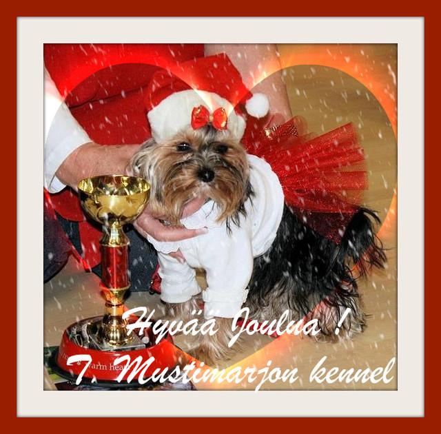 Magic Minidog My Lucky Girl