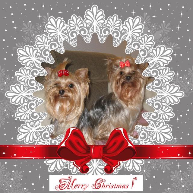 Hyvää Joulua !