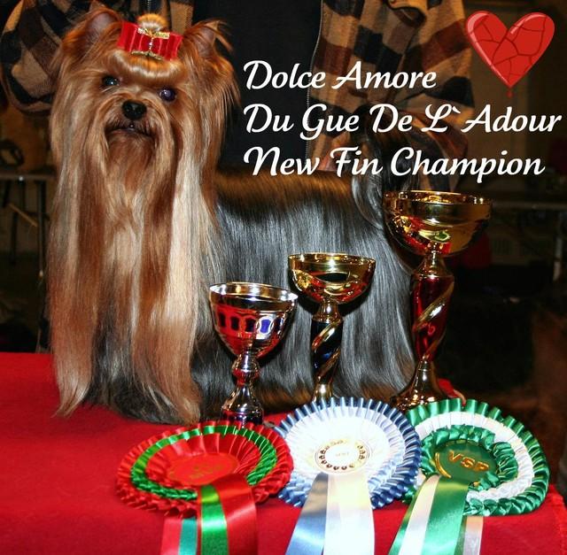 Dolce Amore Du Gue De L `Adour New Fin Ch