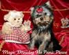 Magic Minidog No Panic Please  3kk