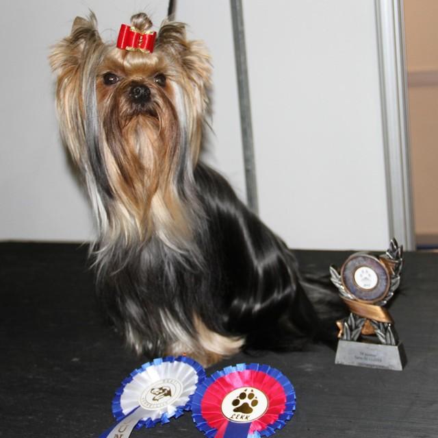capu_new_estonian_junior_champion