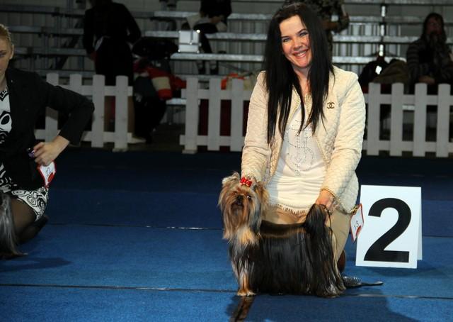 2.11.13 Tartu International Dogshow Cappucino Best Junior & Best male 2