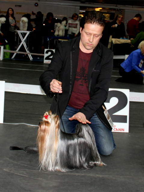 9.02.14 Tallinn Winter Cup Winner 2014 Dogshow