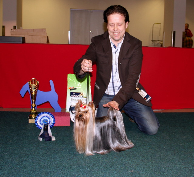 Terrier Speciality Dogshow Best In Show 2 place Maria