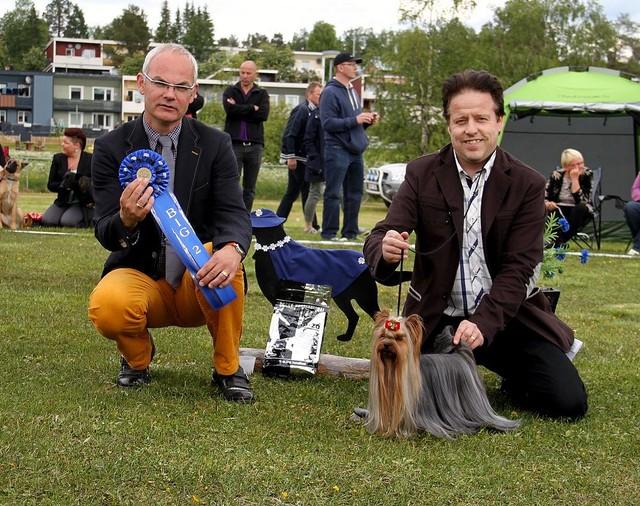Gällivare Dogshow 29,06.14 Best In Group 2 place