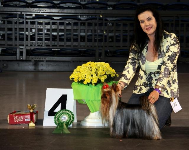 Dilu Tallinn Dogshow 27.9.15 Group Winner 4 place