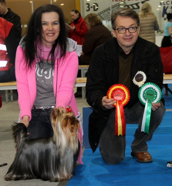 Elegant Baubles Double Delight 1,5 years old BOB Harjavalta Dogshow