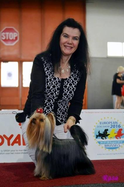 Gogo - European Winner Dogshow V.JW-16