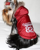 puppy_angel_awesome_winter_jacket.jpg&width=140&height=250