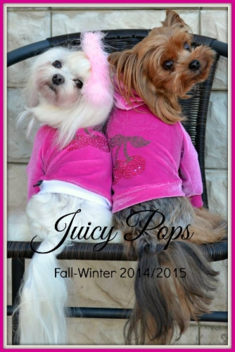Juicy_Pops_cherry_cherry_hoodie_pinkki.jpg&width=280&height=500
