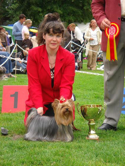 special_9_group_and_yorkshirenterrier_show_bob.jpg