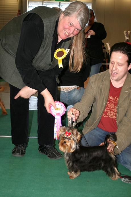 magic_minidog_easy_to_love_nayttely_17.04.11_kotis..jpg