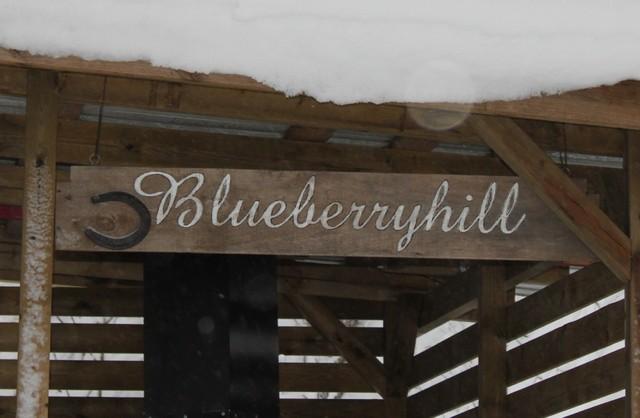 Blueberryhill