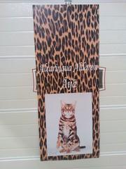 Banderolli kissanäyttelyyn
