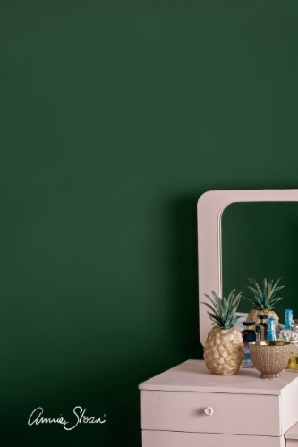 Annie-Sloan-Wall-Paint-Amsterdam-Green-Antoinette-Style-Shot-896px.jpg&width=400&height=500