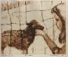 Tyttö ja lammas