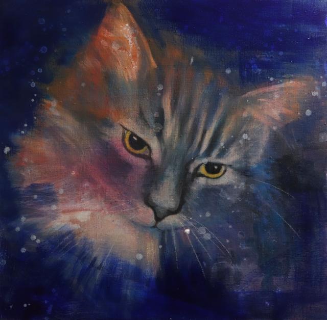 Starcat