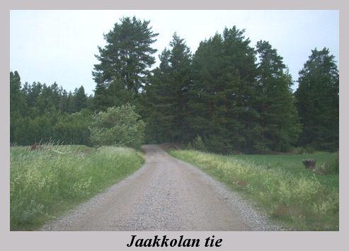 jaakkolan_tie.jpg
