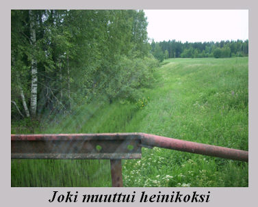 joki_muuttui_heinikoksi.jpg
