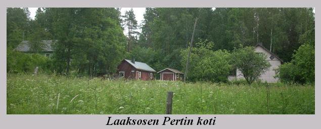 laaksosen_pertin_koti.jpg